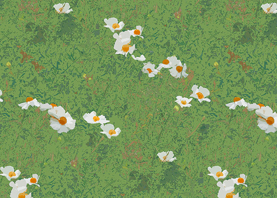Matilija Poppies Pattern Swatch